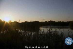 fiume po carpfishing (2)