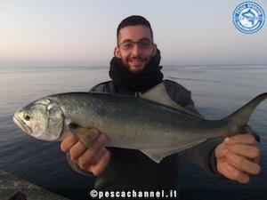 serra pesca mania3 (2)