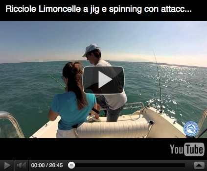 ricciole a vertical jig e spinning limoncelle
